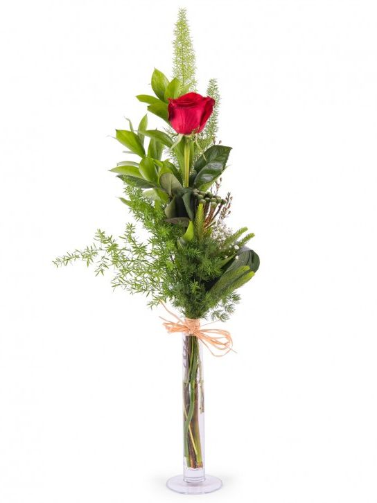 Rosas One